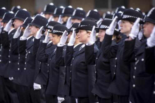 police251115