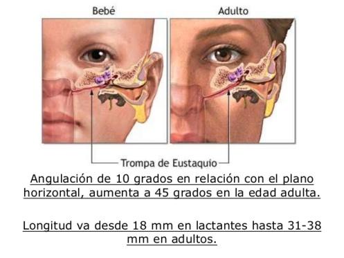 otitis-media-aguda-y-crnica-11-638