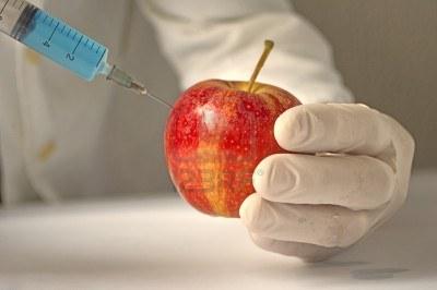 """""""Los olivos, viñas y naranjos se mueren en España, 15421715-manzana-roja-en-la-ingenieria-genetica-de-laboratorio-el-concepto-de-alimentos-transgenicos"""