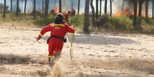Bomberos-incendio-Coto-Doñana