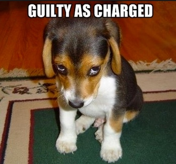 GUILTY-AS-CHARGED
