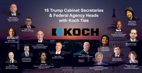 koch-cabinet-large
