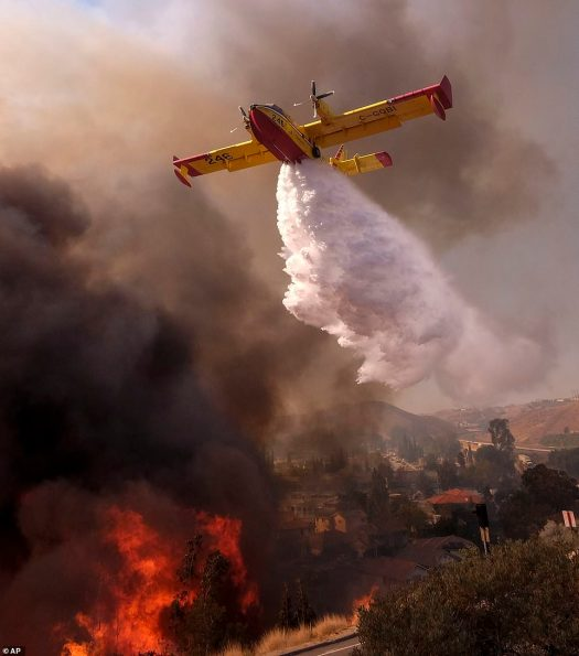 12310786-6925015-French_news_site_Le_Monde_explains_A_Canadair_projects_about_six-a-3_1555367547157