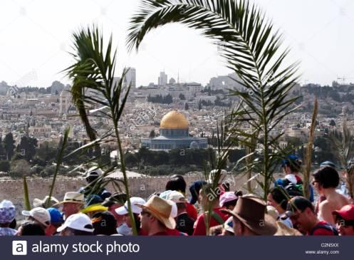 agitando-ramas-de-palma-los-cristianos-conmemoran-el-viaje-de-jesus-desde-el-monte-de-los-olivos-a-jerusalen-el-domingo-de-ramos-c2n5xx
