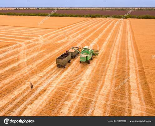 Harvester Unloads the Crop into a Truck. Aerial View